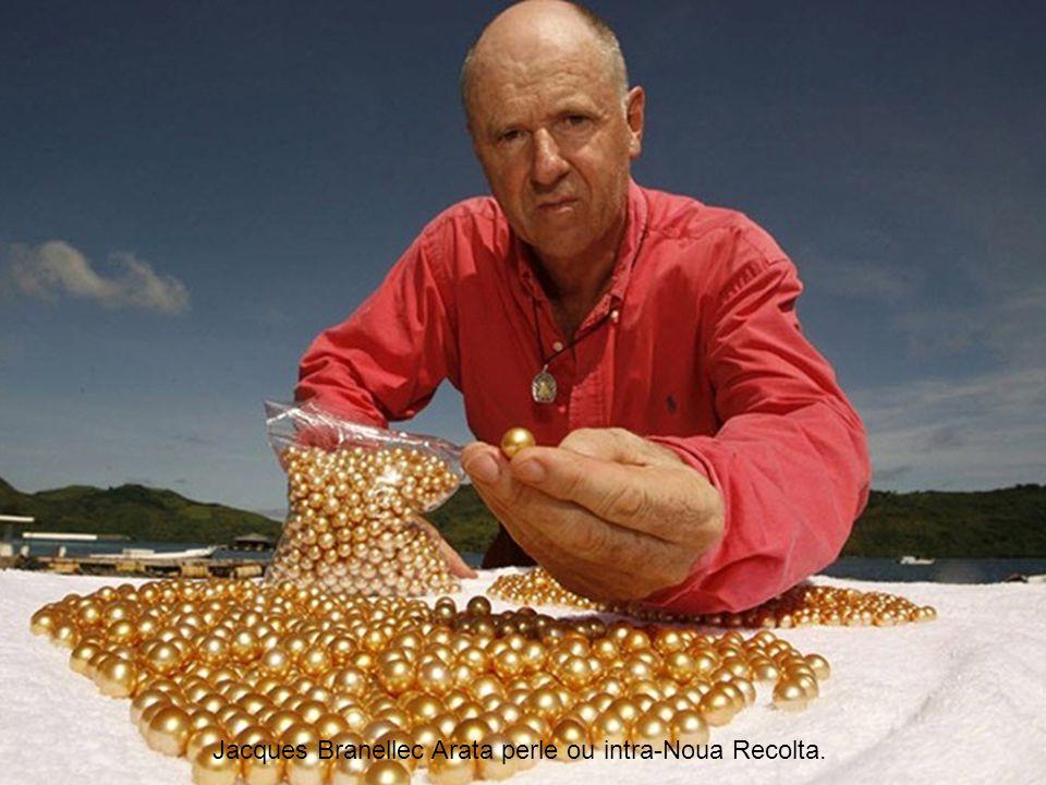 Jacques Branellec Arata perle ou intra-Noua Recolta.