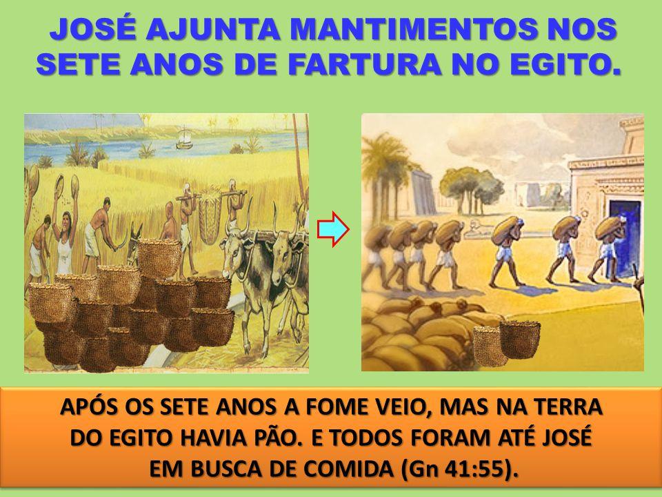 JOSÉ AJUNTA MANTIMENTOS NOS SETE ANOS DE FARTURA NO EGITO.