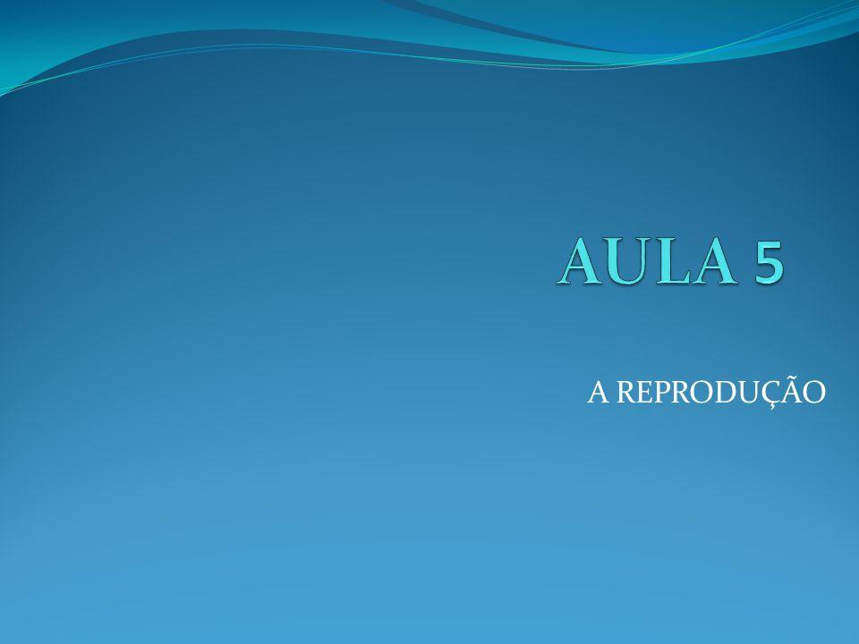 AULA 5 A REPRODUÇÃO