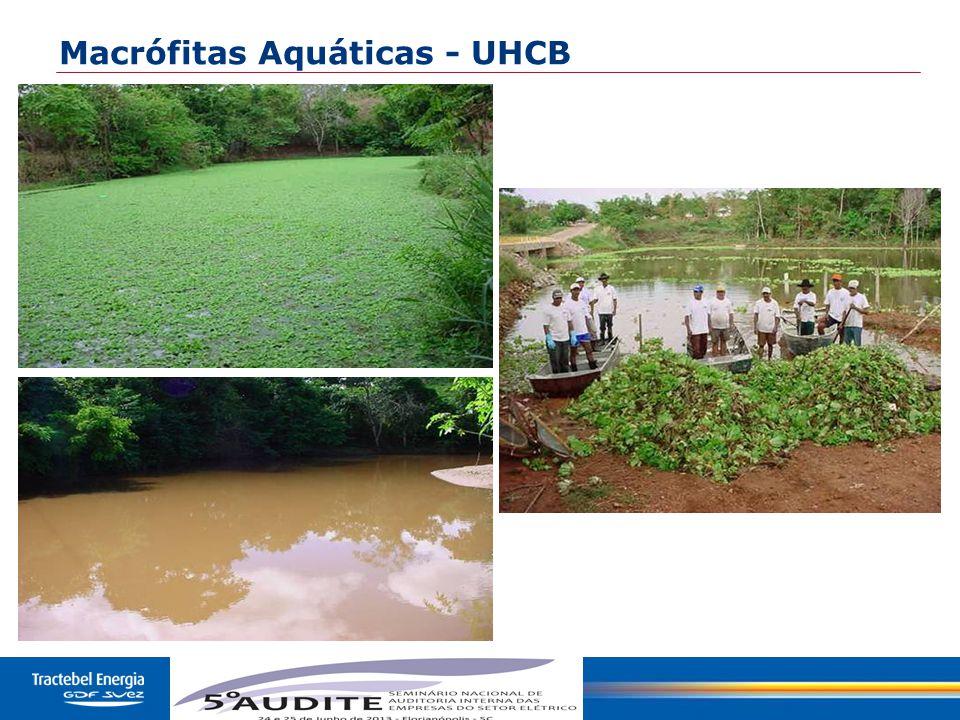 Macrófitas Aquáticas - UHCB