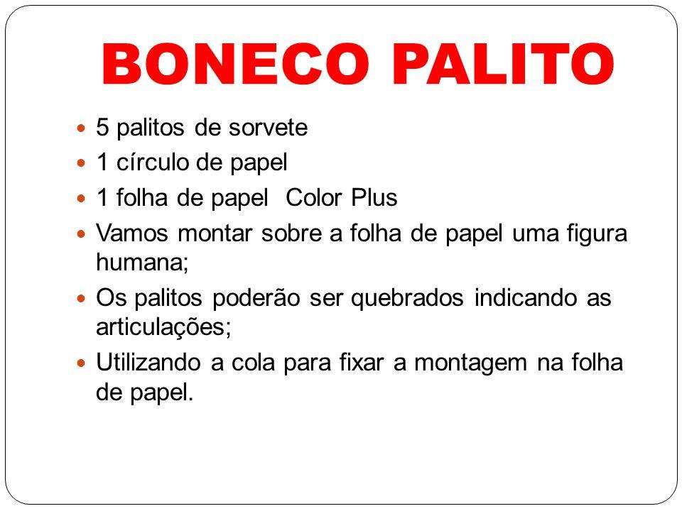 BONECO PALITO 5 palitos de sorvete 1 círculo de papel