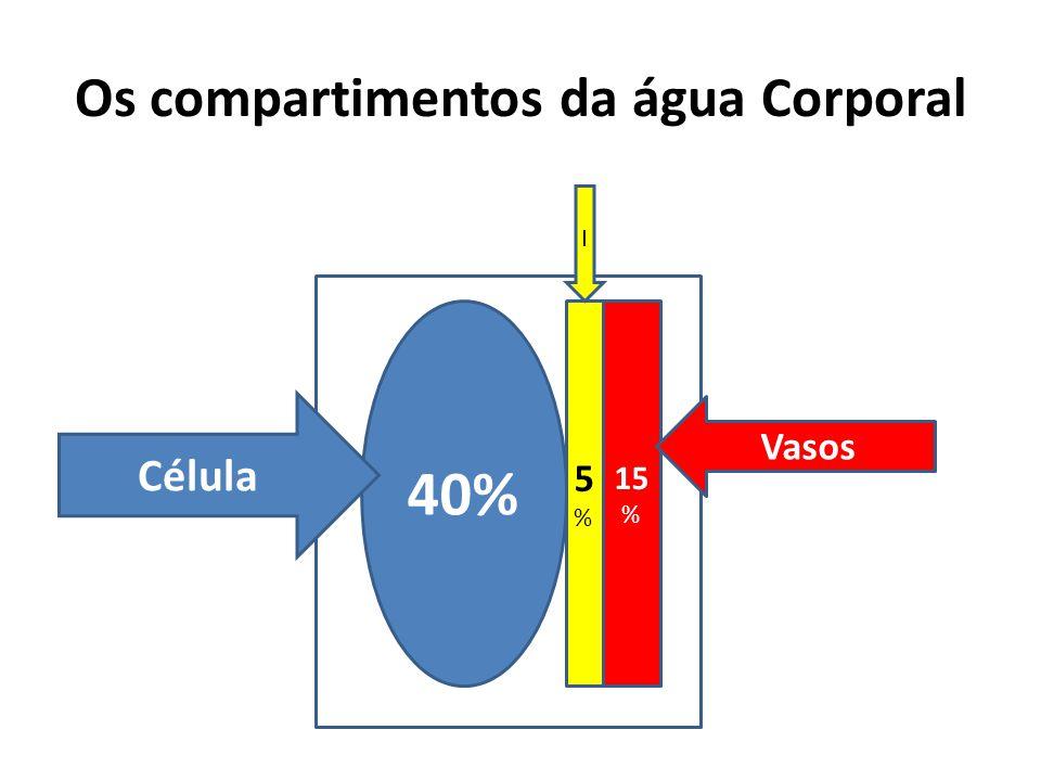 Os compartimentos da água Corporal