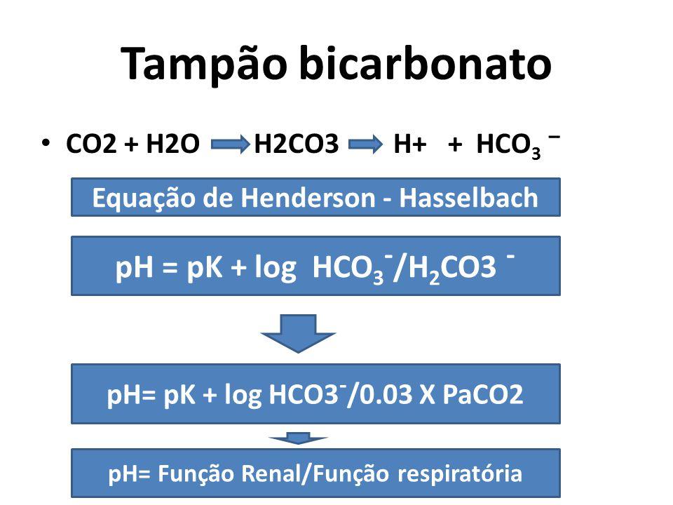 Equação de Henderson - Hasselbach pH= Função Renal/Função respiratória