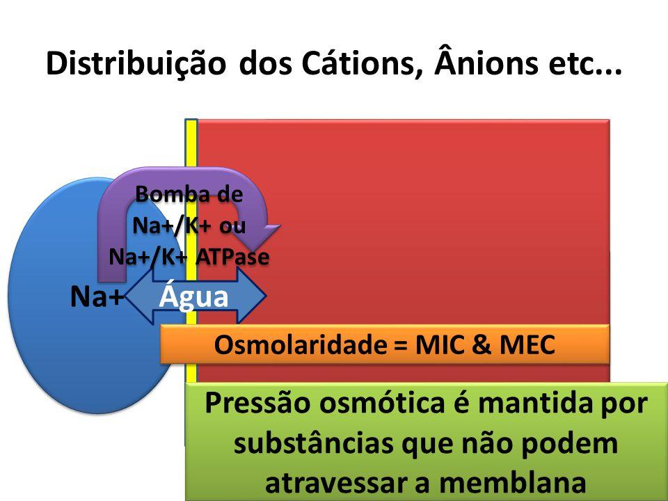 Distribuição dos Cátions, Ânions etc...