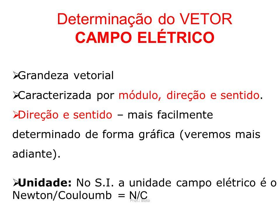 Determinação do VETOR CAMPO ELÉTRICO