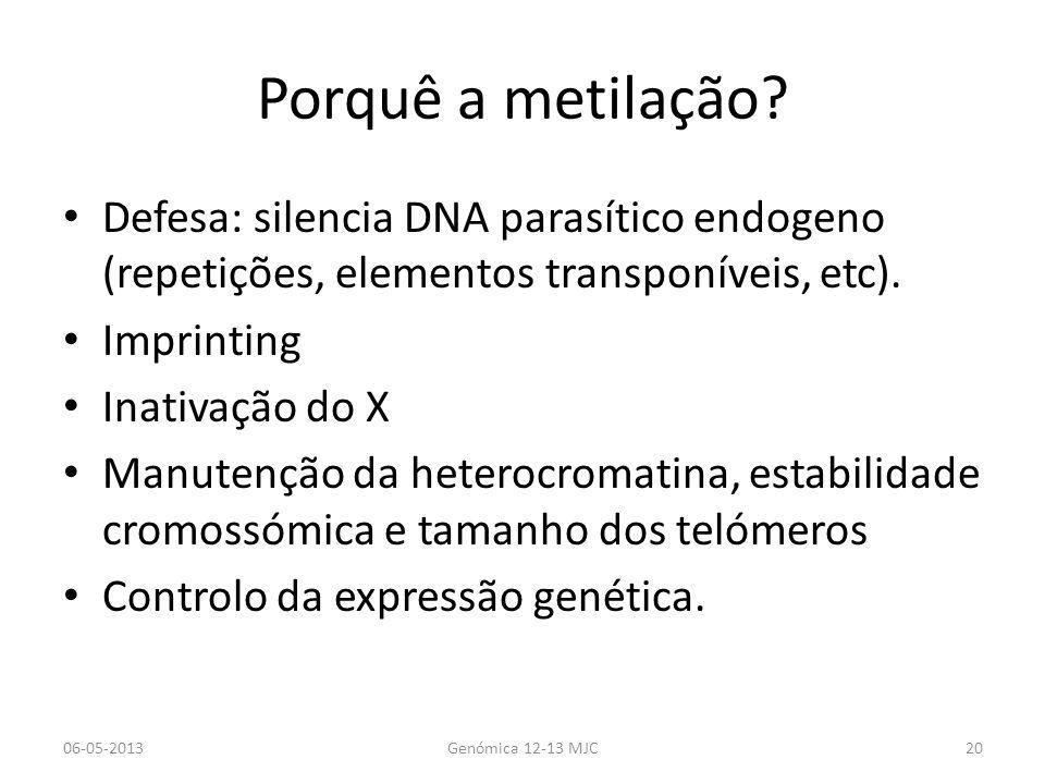 Porquê a metilação Defesa: silencia DNA parasítico endogeno (repetições, elementos transponíveis, etc).