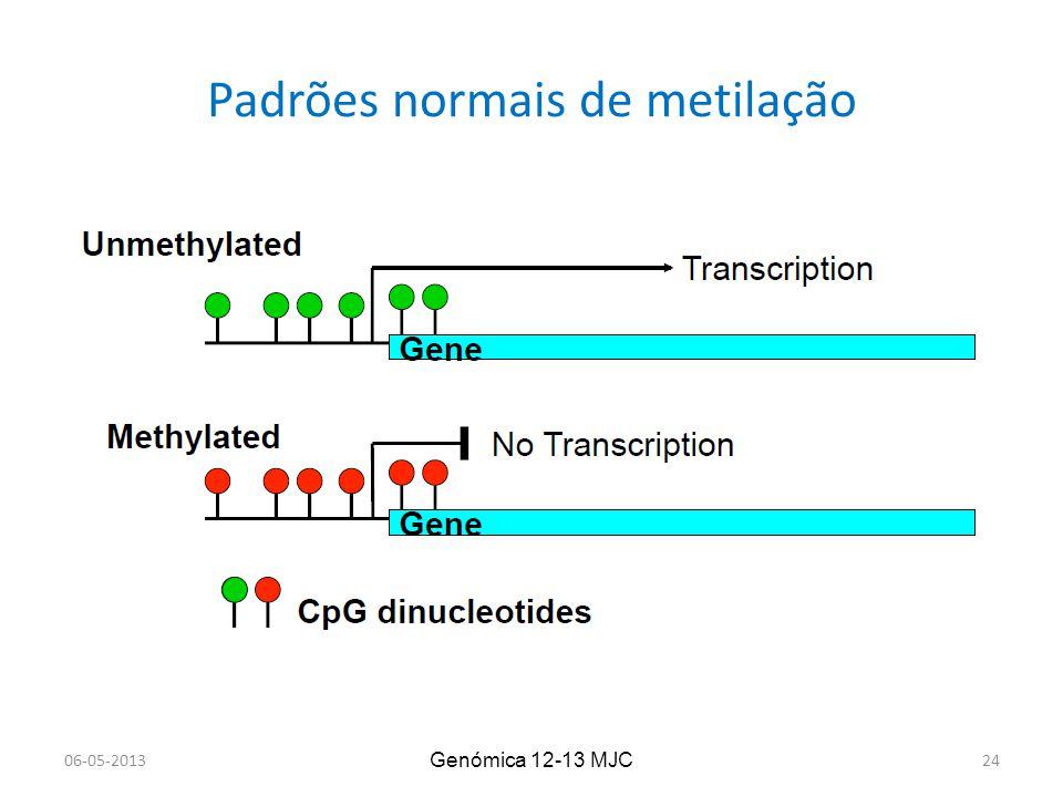 Padrões normais de metilação