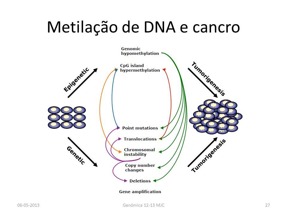 Metilação de DNA e cancro