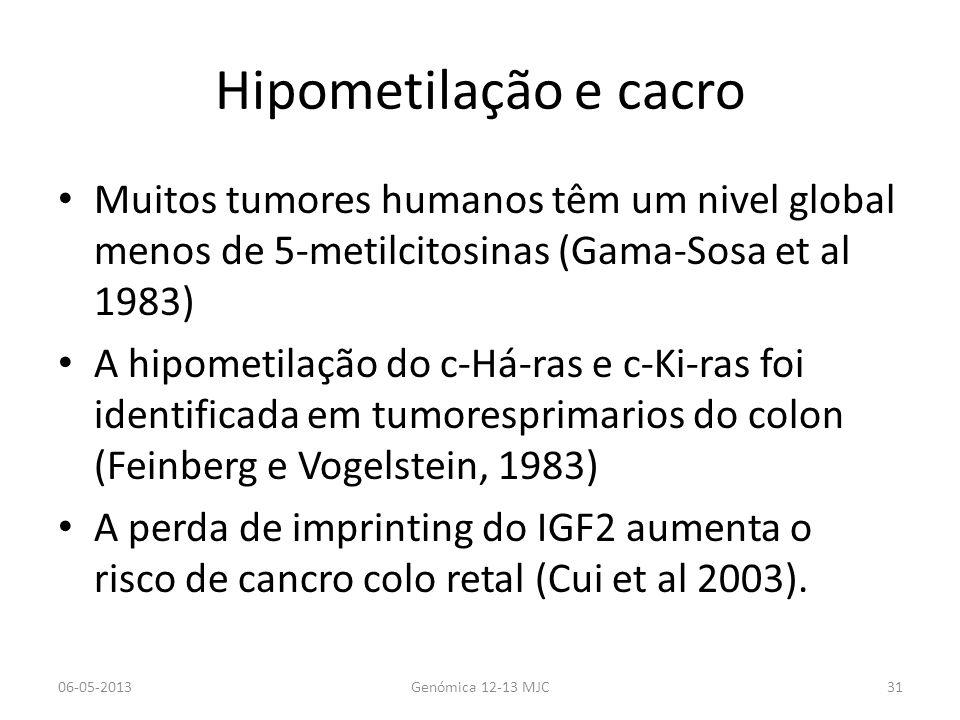 Hipometilação e cacro Muitos tumores humanos têm um nivel global menos de 5-metilcitosinas (Gama-Sosa et al 1983)