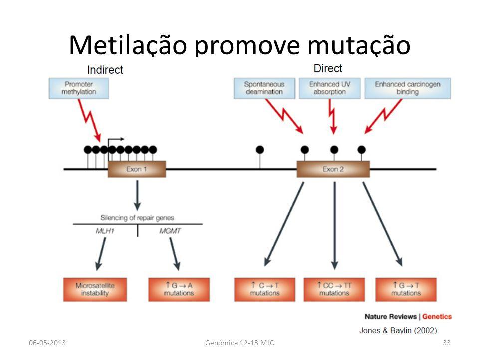 Metilação promove mutação