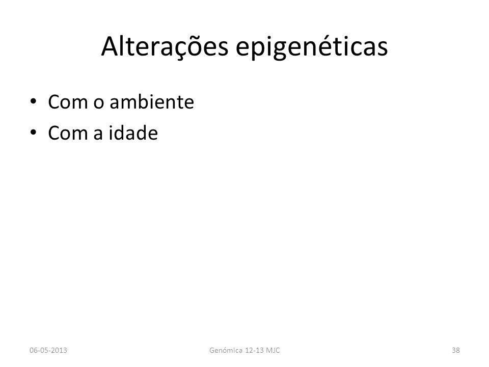 Alterações epigenéticas