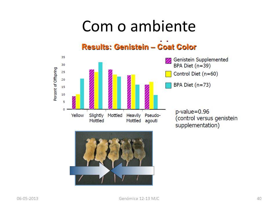 Com o ambiente 06-05-2013 Genómica 12-13 MJC