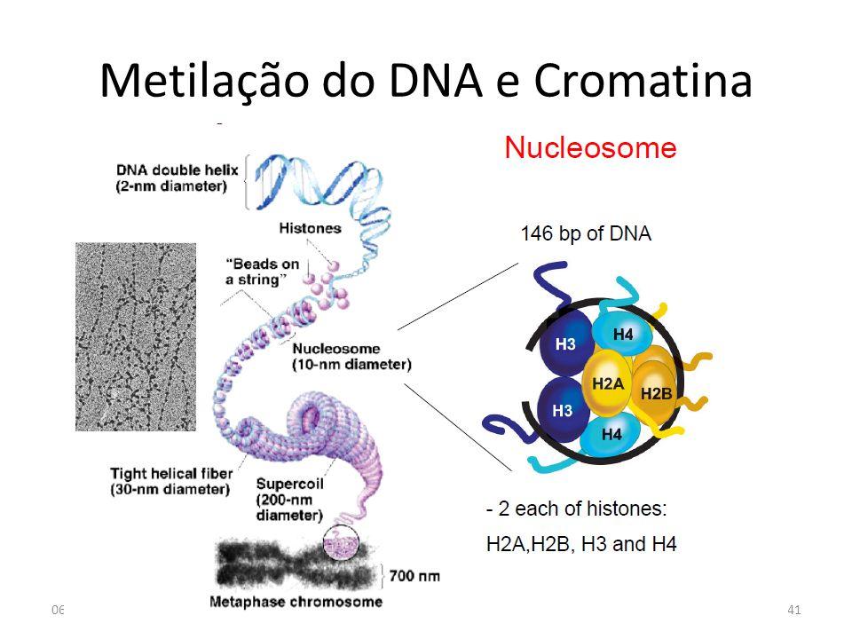 Metilação do DNA e Cromatina