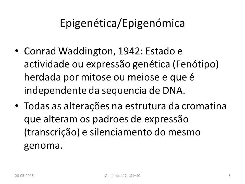 Epigenética/Epigenómica