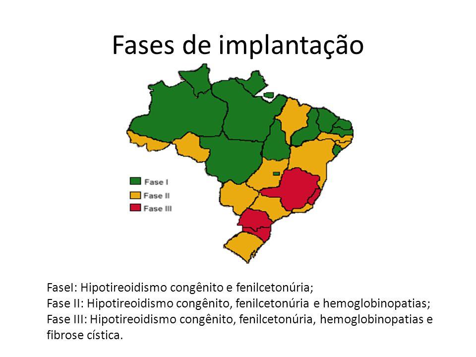 Fases de implantação
