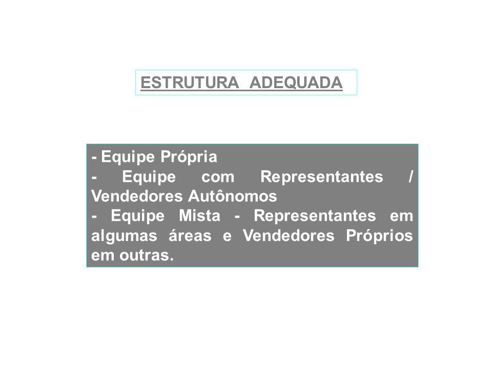 ESTRUTURA ADEQUADA - Equipe Própria. - Equipe com Representantes / Vendedores Autônomos.