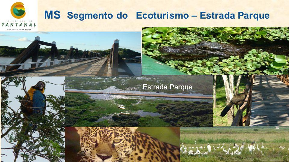 MS Segmento do Ecoturismo – Estrada Parque