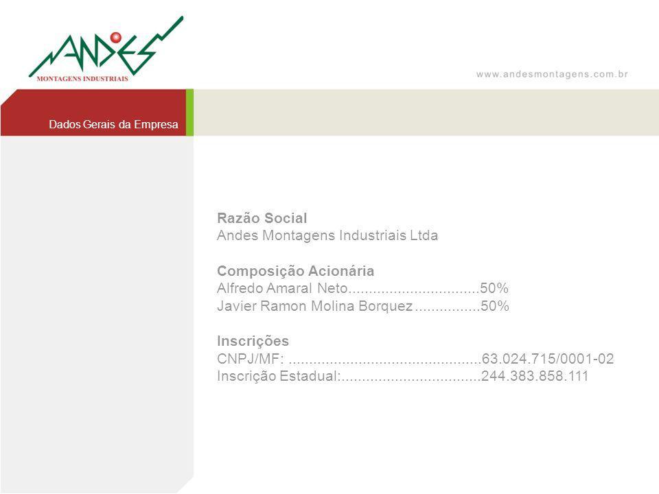 Andes Montagens Industriais Ltda Composição Acionária