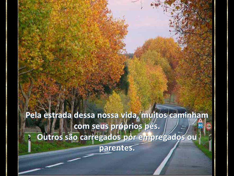 Pela estrada dessa nossa vida, muitos caminham com seus próprios pés