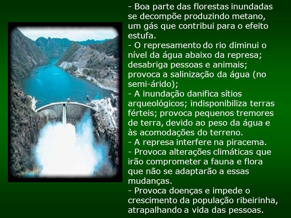 - Boa parte das florestas inundadas se decompõe produzindo metano, um gás que contribui para o efeito estufa.