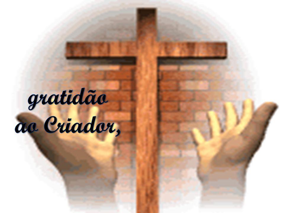 gratidão ao Criador,
