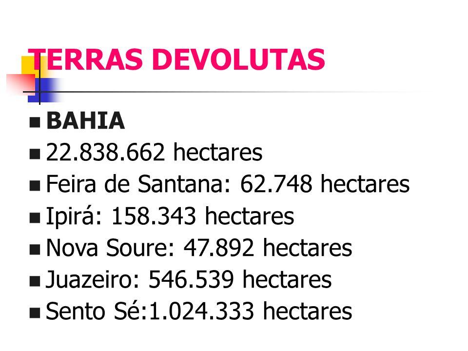 TERRAS DEVOLUTAS BAHIA 22.838.662 hectares