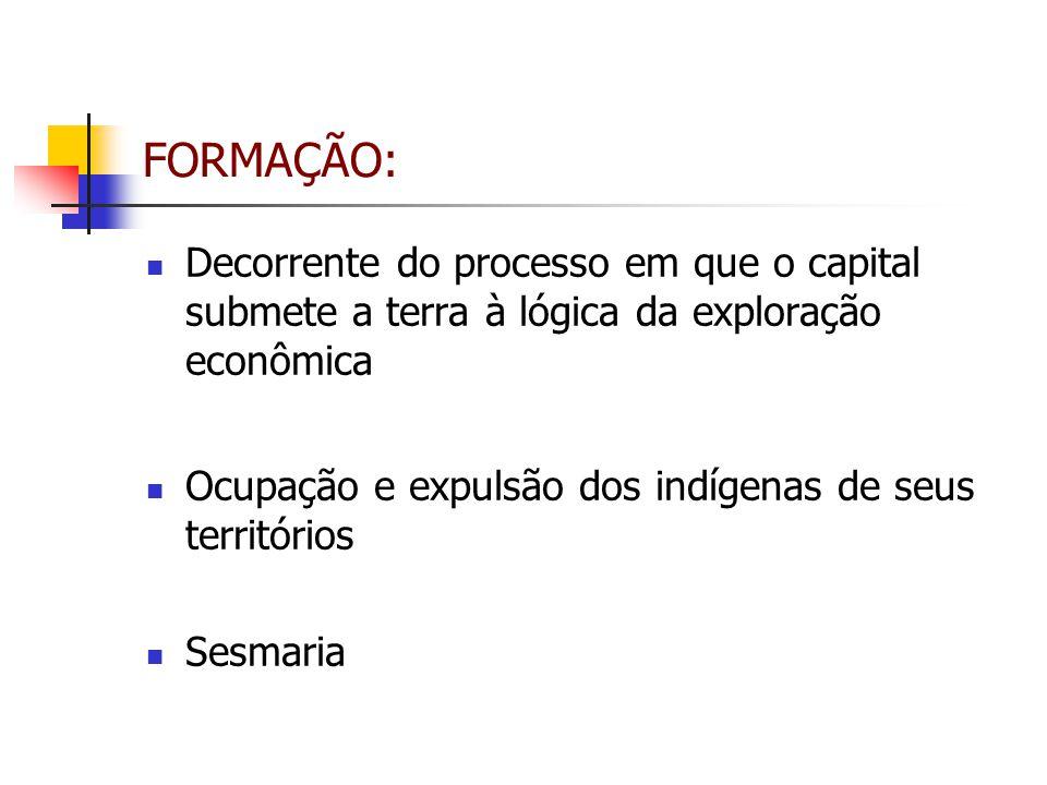 FORMAÇÃO: Decorrente do processo em que o capital submete a terra à lógica da exploração econômica.