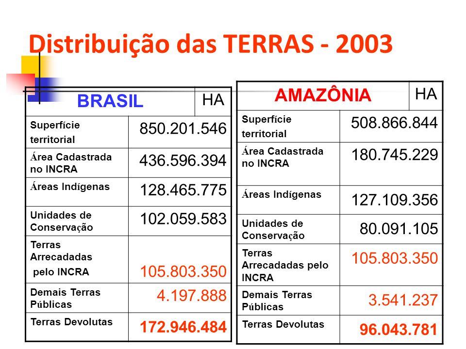 Distribuição das TERRAS - 2003