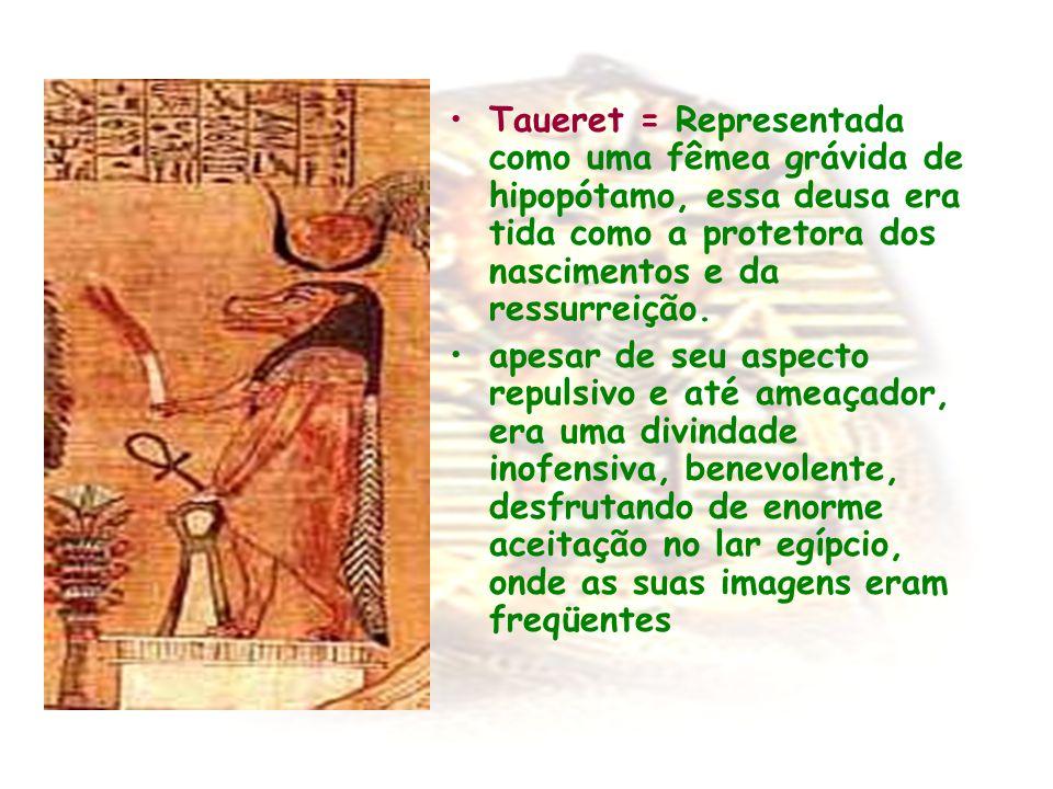 Taueret = Representada como uma fêmea grávida de hipopótamo, essa deusa era tida como a protetora dos nascimentos e da ressurreição.