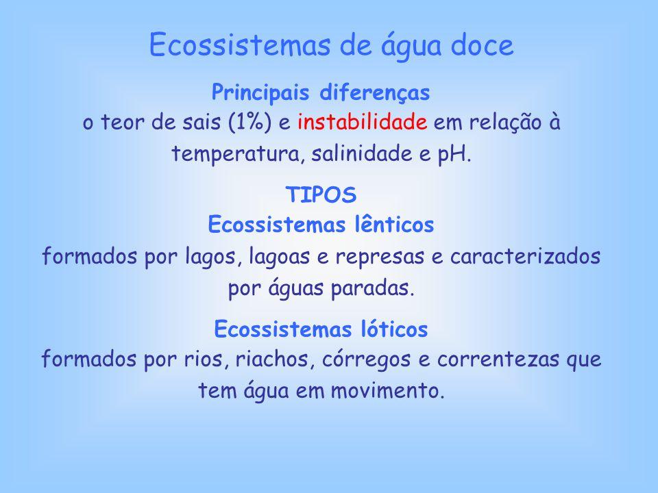 Principais diferenças Ecossistemas lênticos