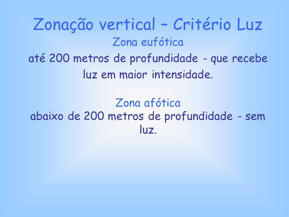 Zonação vertical – Critério Luz