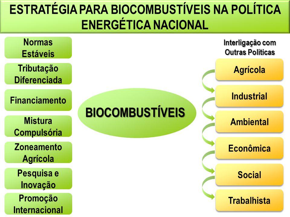 ESTRATÉGIA PARA BIOCOMBUSTÍVEIS NA POLÍTICA ENERGÉTICA NACIONAL