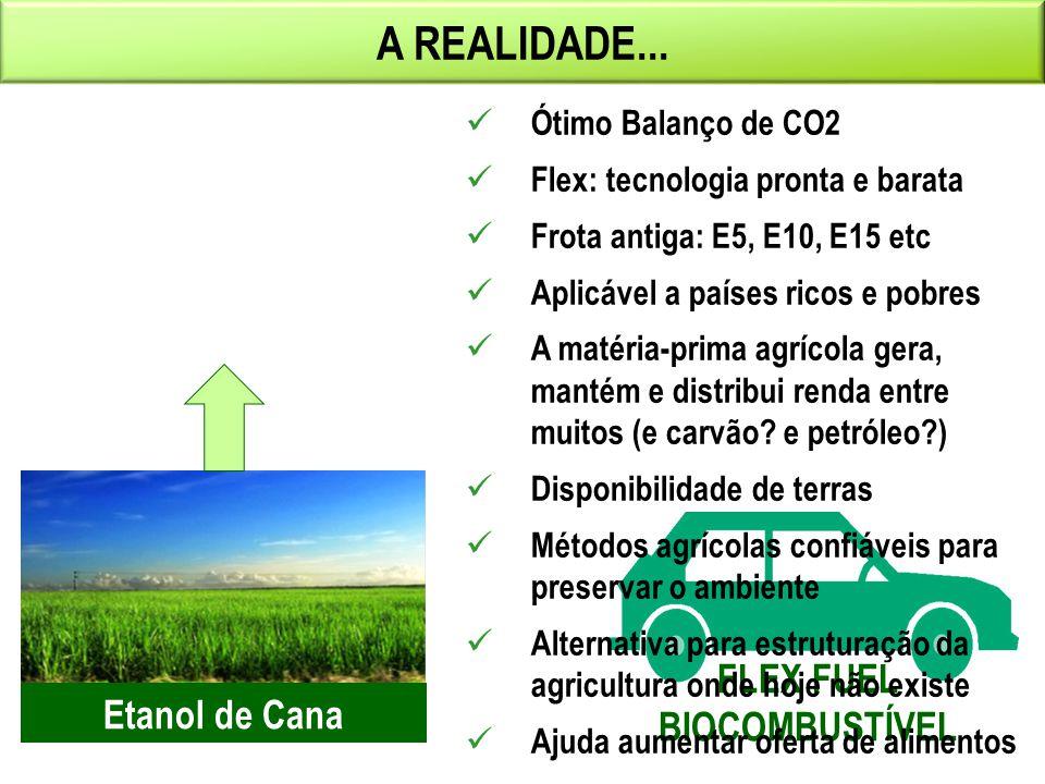 A REALIDADE... FLEX FUEL BIOCOMBUSTÍVEL Etanol de Cana