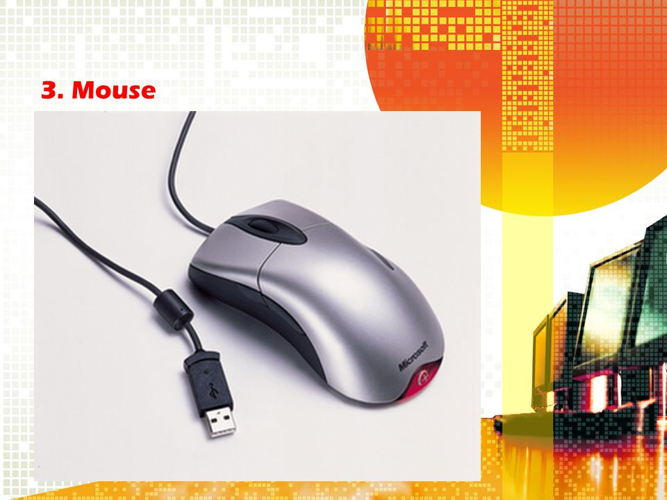 3. Mouse