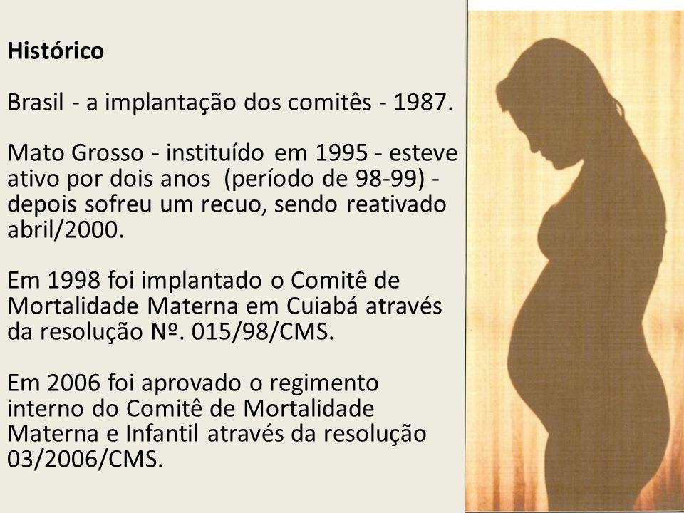 Histórico Brasil - a implantação dos comitês - 1987