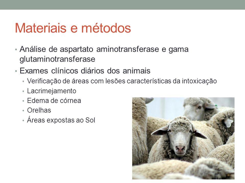 Materiais e métodos Análise de aspartato aminotransferase e gama glutaminotransferase. Exames clínicos diários dos animais.