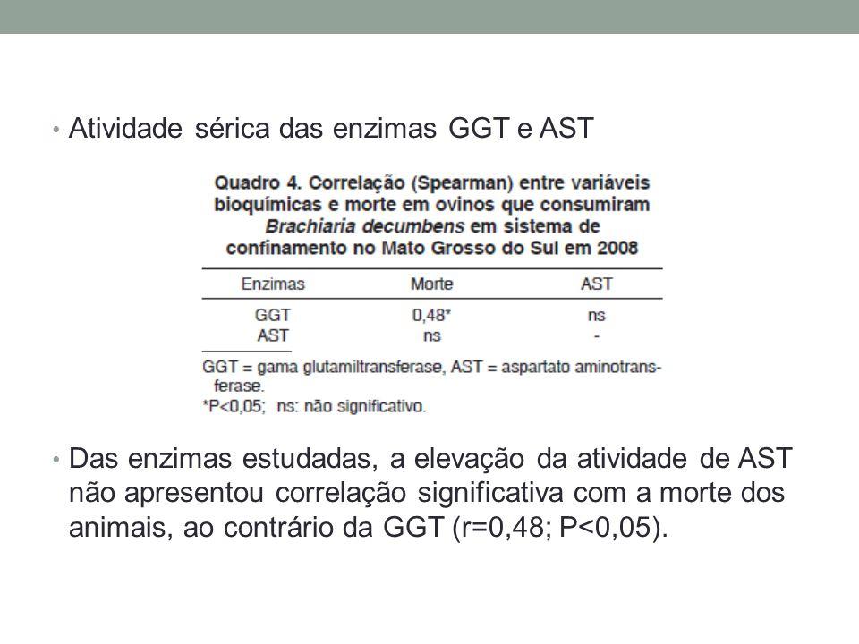 Atividade sérica das enzimas GGT e AST