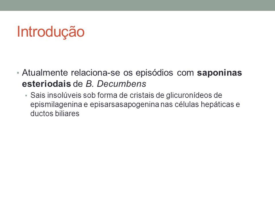 Introdução Atualmente relaciona-se os episódios com saponinas esteriodais de B. Decumbens.