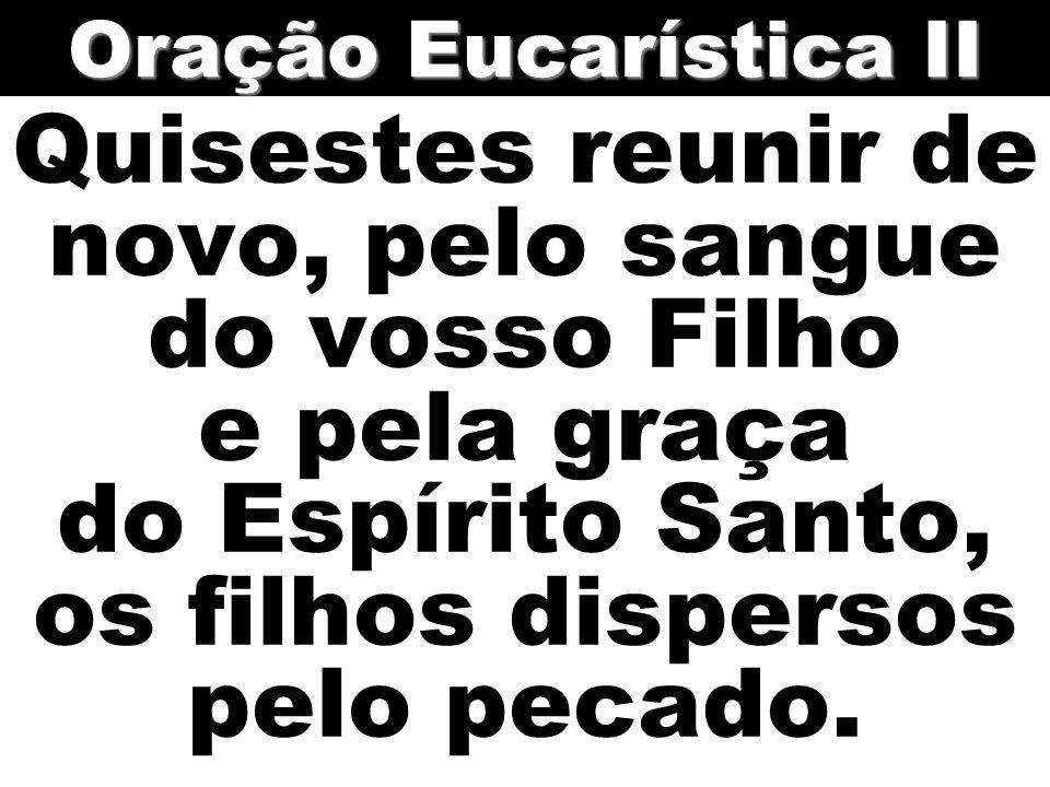 Oração Eucarística II Quisestes reunir de novo, pelo sangue do vosso Filho e pela graça do Espírito Santo, os filhos dispersos pelo pecado.