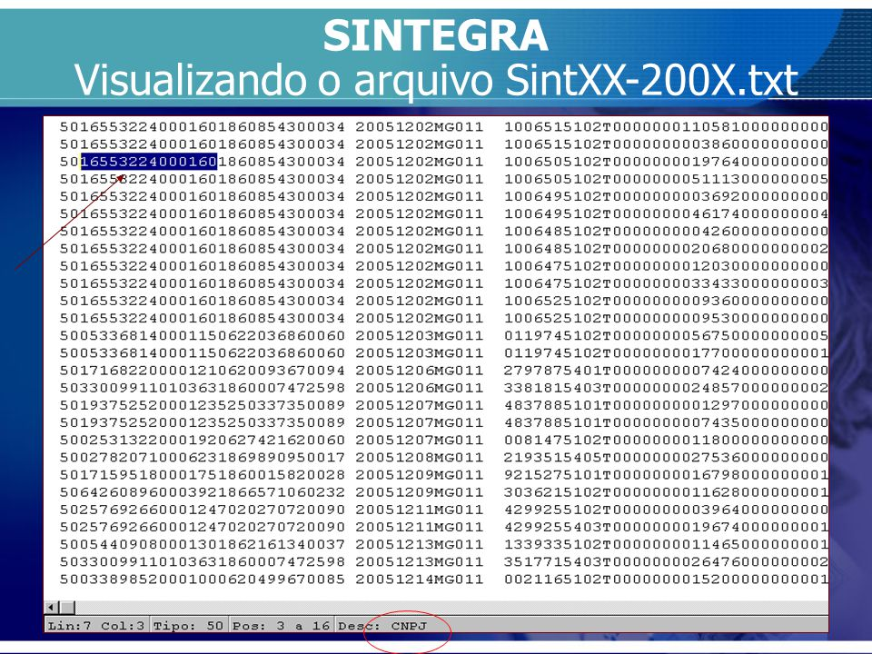 Visualizando o arquivo SintXX-200X.txt