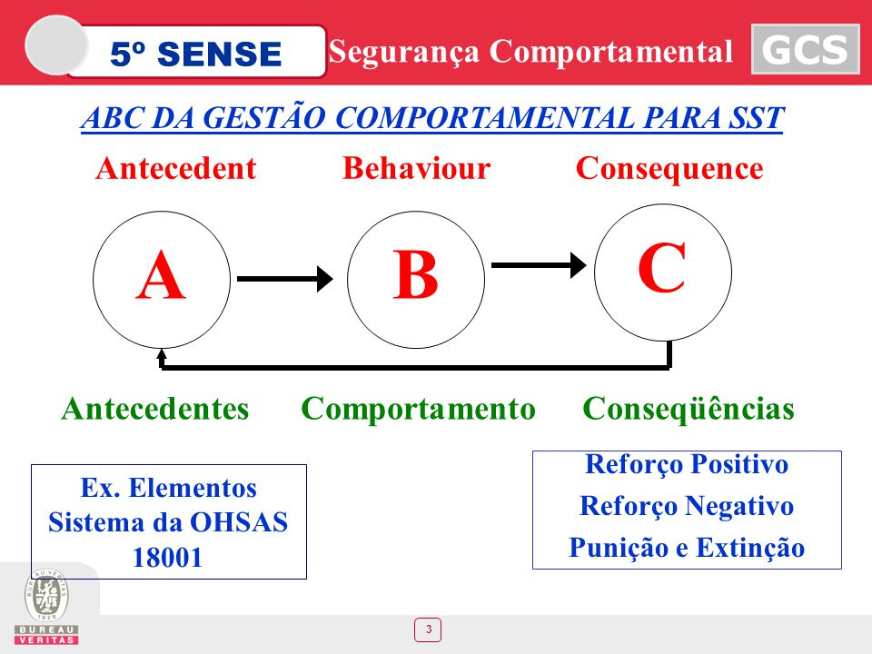 Ex. Elementos Sistema da OHSAS 18001