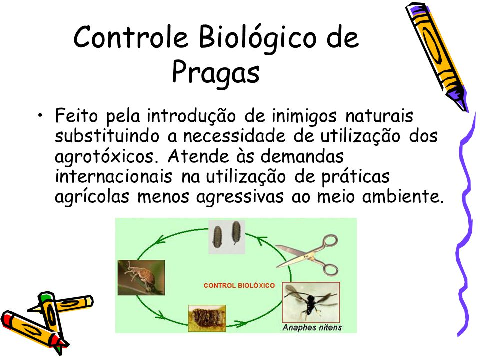 Controle Biológico de Pragas