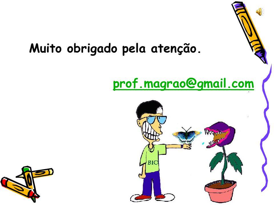 Muito obrigado pela atenção. prof.magrao@gmail.com