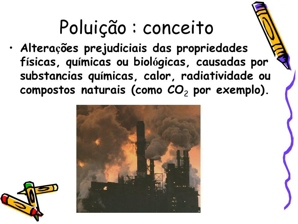 Poluição : conceito