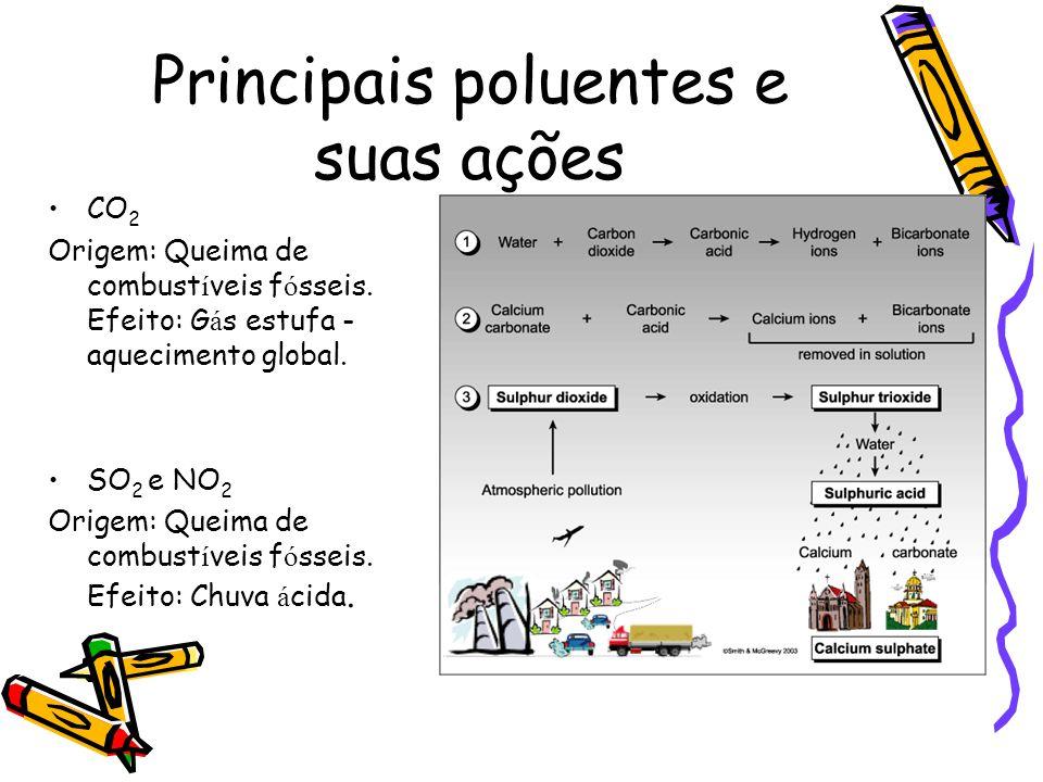 Principais poluentes e suas ações