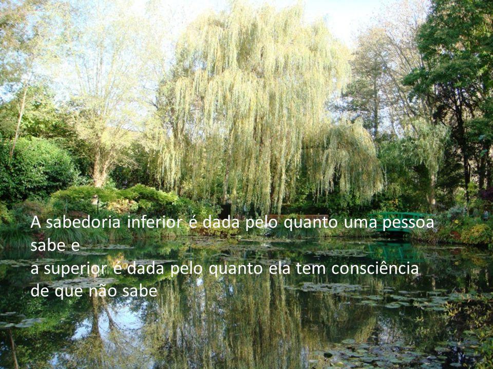 A sabedoria inferior é dada pelo quanto uma pessoa sabe e a superior é dada pelo quanto ela tem consciência de que não sabe