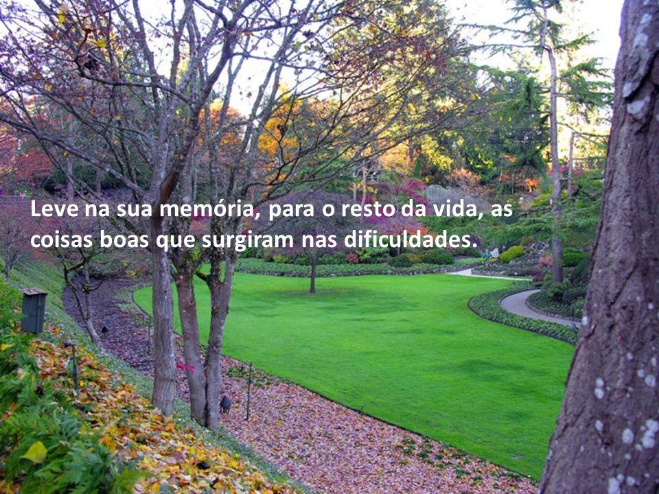Leve na sua memória, para o resto da vida, as coisas boas que surgiram nas dificuldades.