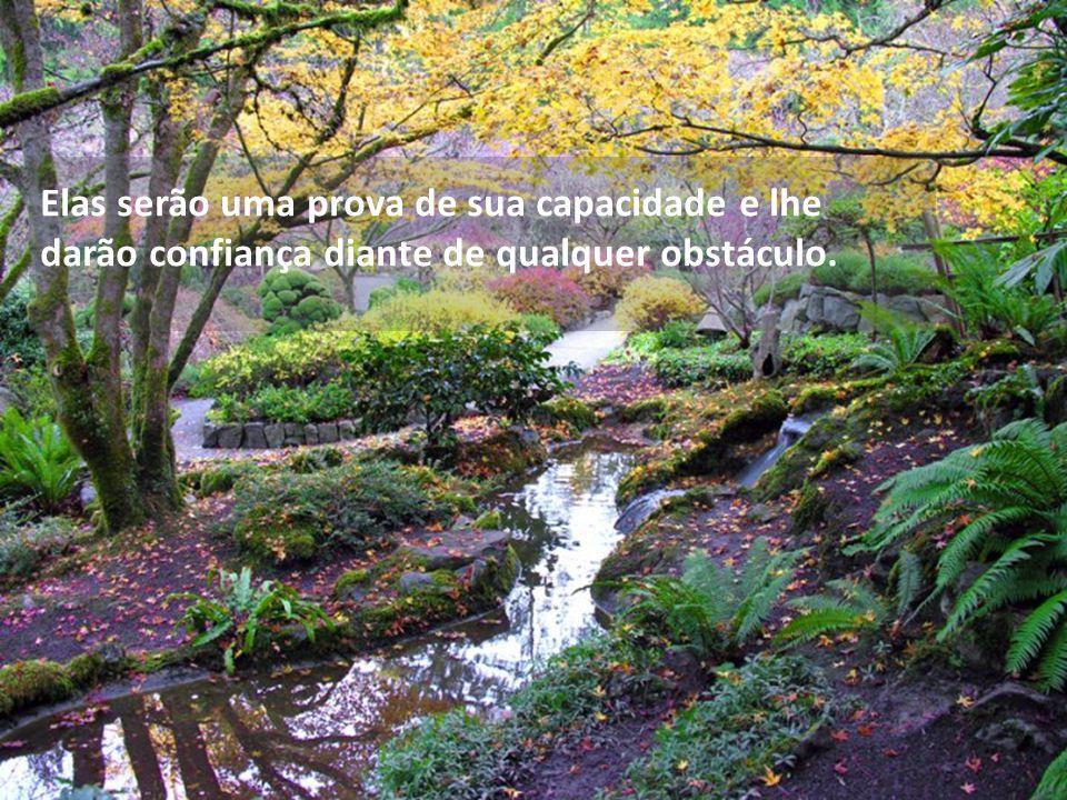 Elas serão uma prova de sua capacidade e lhe darão confiança diante de qualquer obstáculo.