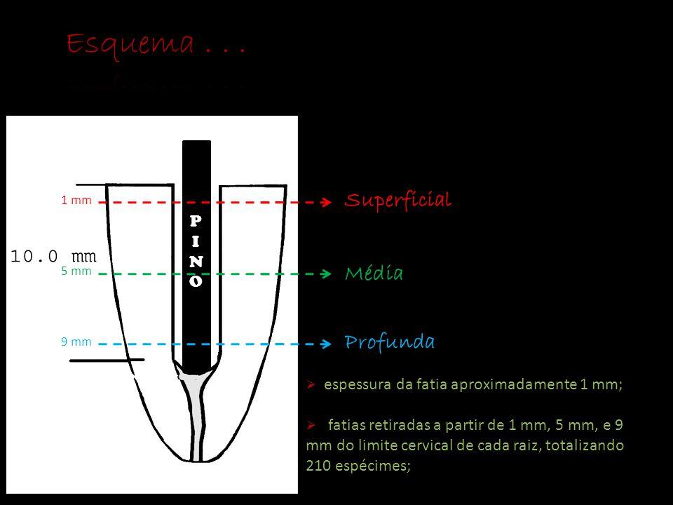 Esquema . . . Superficial Média Profunda P I NO