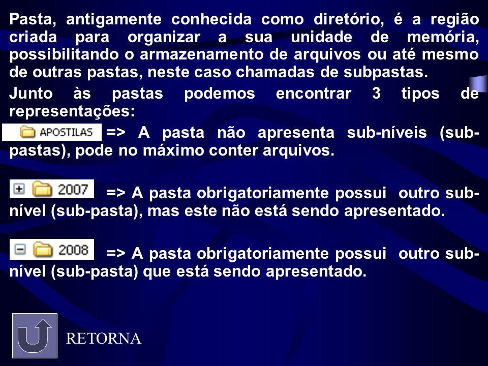 Pasta, antigamente conhecida como diretório, é a região criada para organizar a sua unidade de memória, possibilitando o armazenamento de arquivos ou até mesmo de outras pastas, neste caso chamadas de subpastas.
